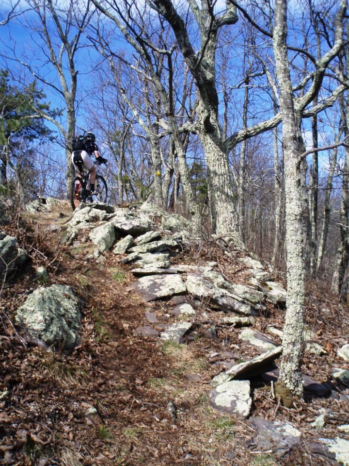 Rider Ben Brown  Photo by Paul Sullivan