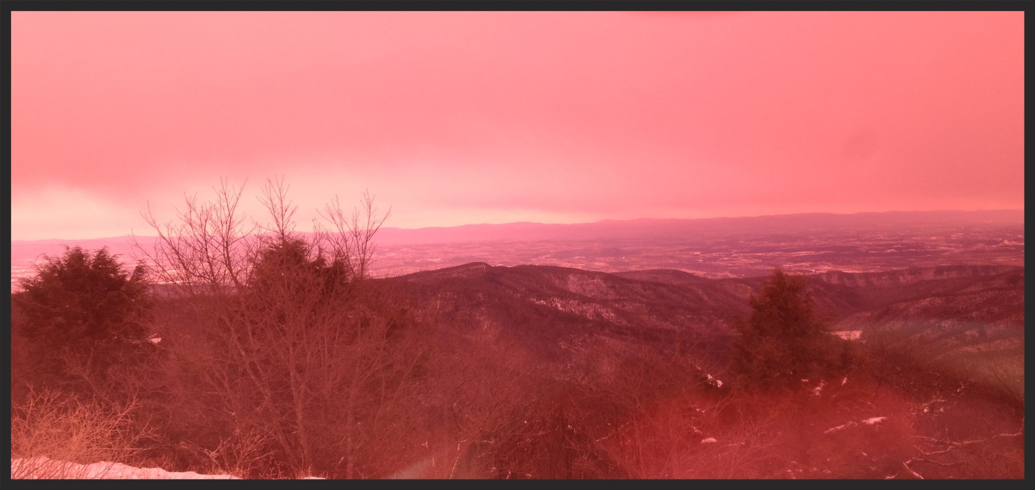 A view through my rose colored goggles