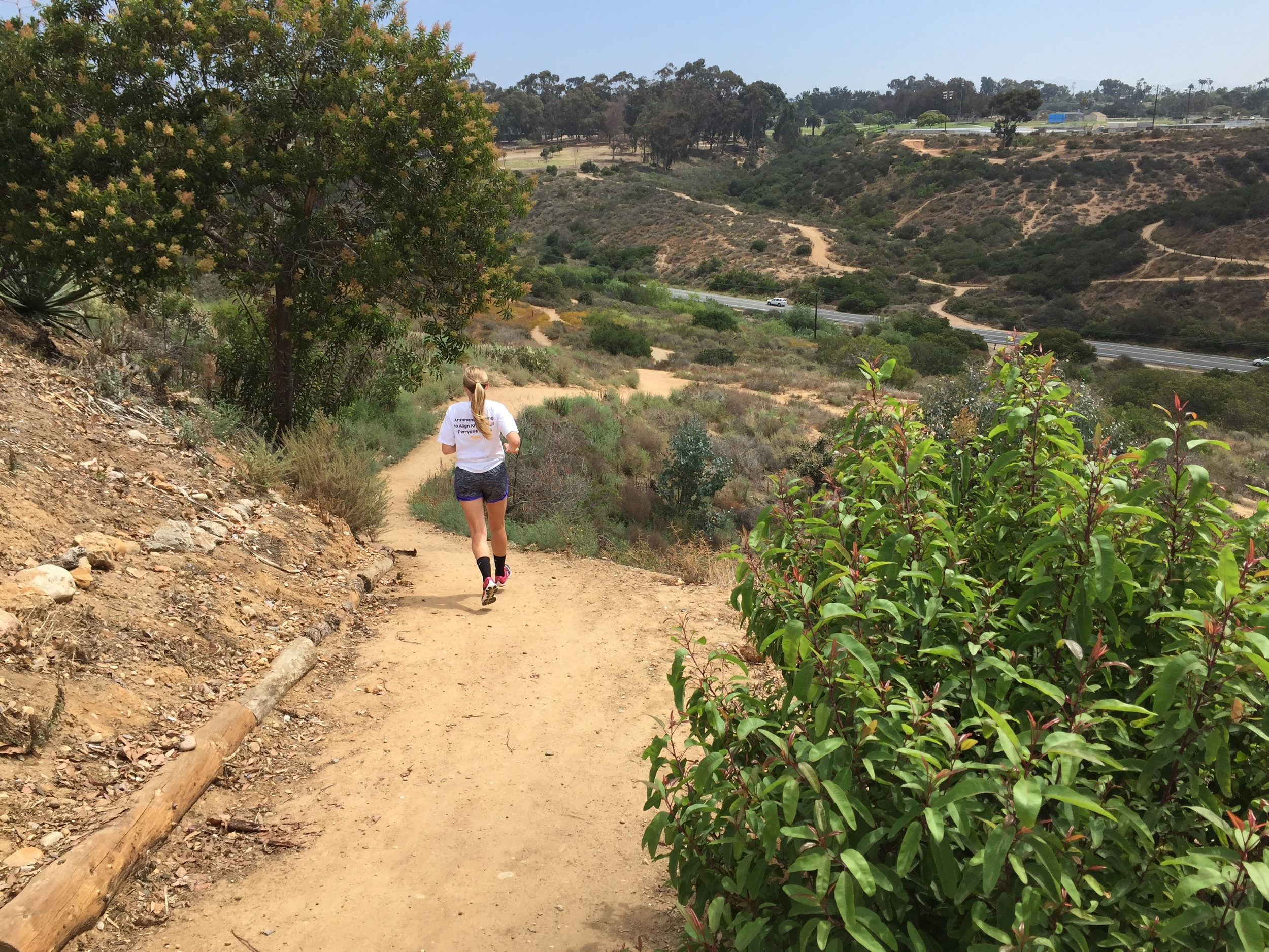 Trails in San Diego on a beautiful day