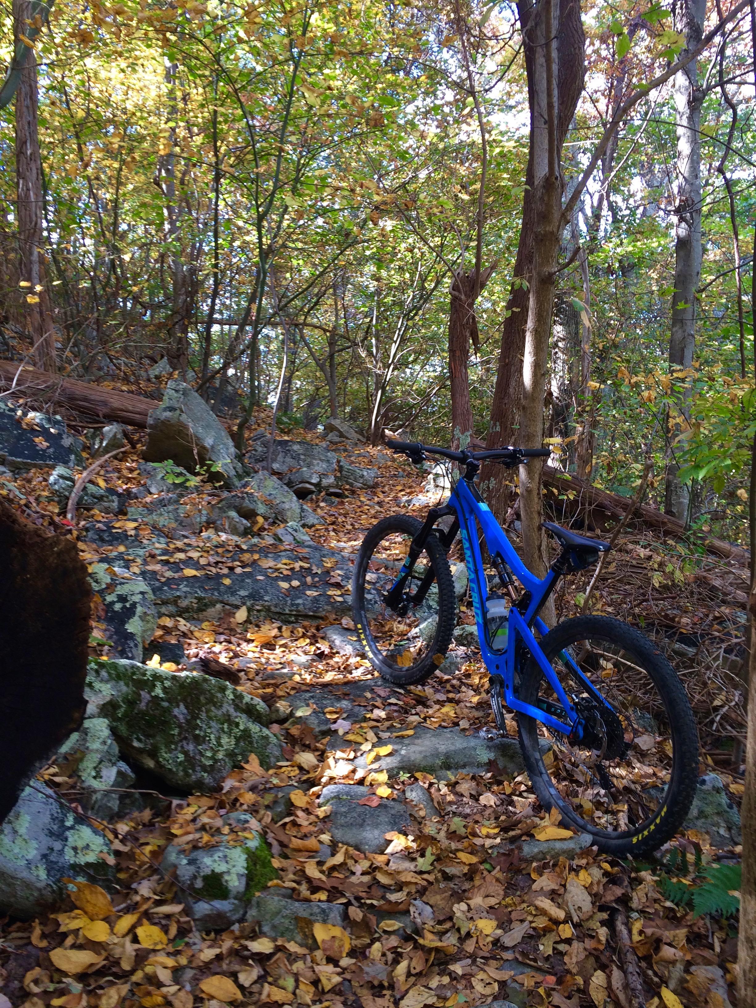East Ridge of Fort Valley, VA