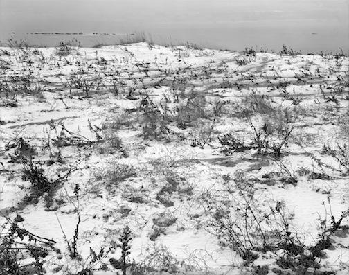 Snowy Shore toward Hen & Chickens, Goosebury Neck, 1979.jpg