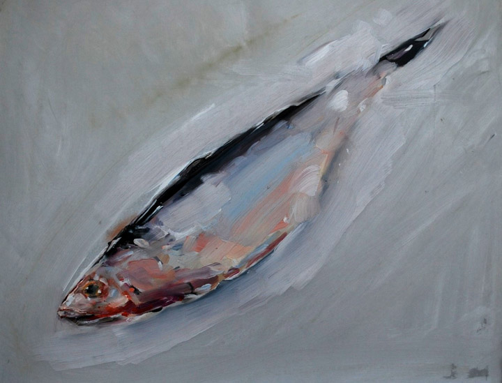 "Fish from Stavern, Norway  , Ben Shattuck.  12"" x 9.5"", OIl on Mylar"