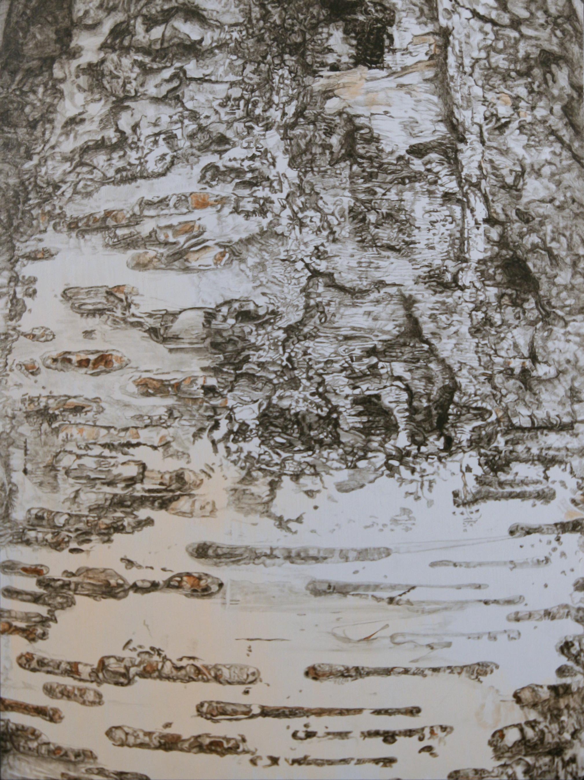 """TREE, Halifax, NS,  Joan Backes,2012    24"""" x 18"""", Acrylic on pane"""