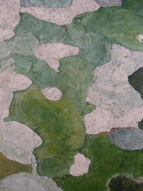 """TREE, Wave Hill, NY,  Joan Backes,2009.  24"""" x 18""""Acrylic on panel"""