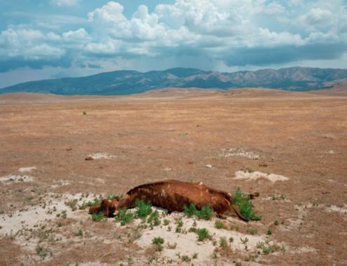 "Near Dugway Proving Grounds, Utah  , Kipp Wettstein, 2007.   50"" x 60"", digital C-print"