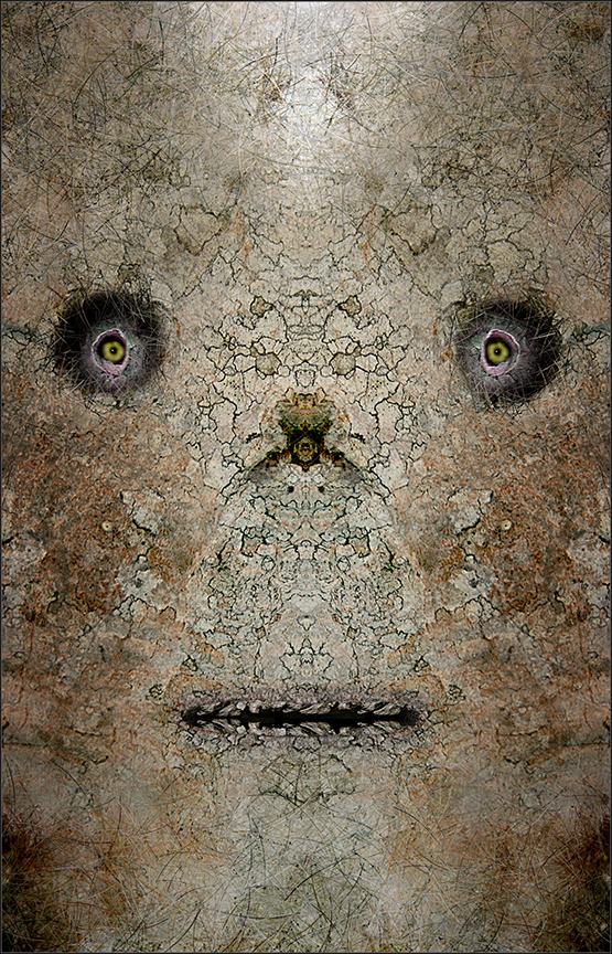 """Faces from the Forest Series 12  , Harvey Goldman, 2013  26"""" x 36"""" digital print"""