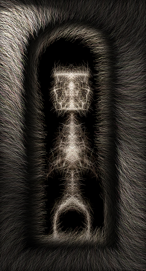 """tall_glia 03  , Harvey Goldman, 2013  41"""" x 22"""" digital print"""