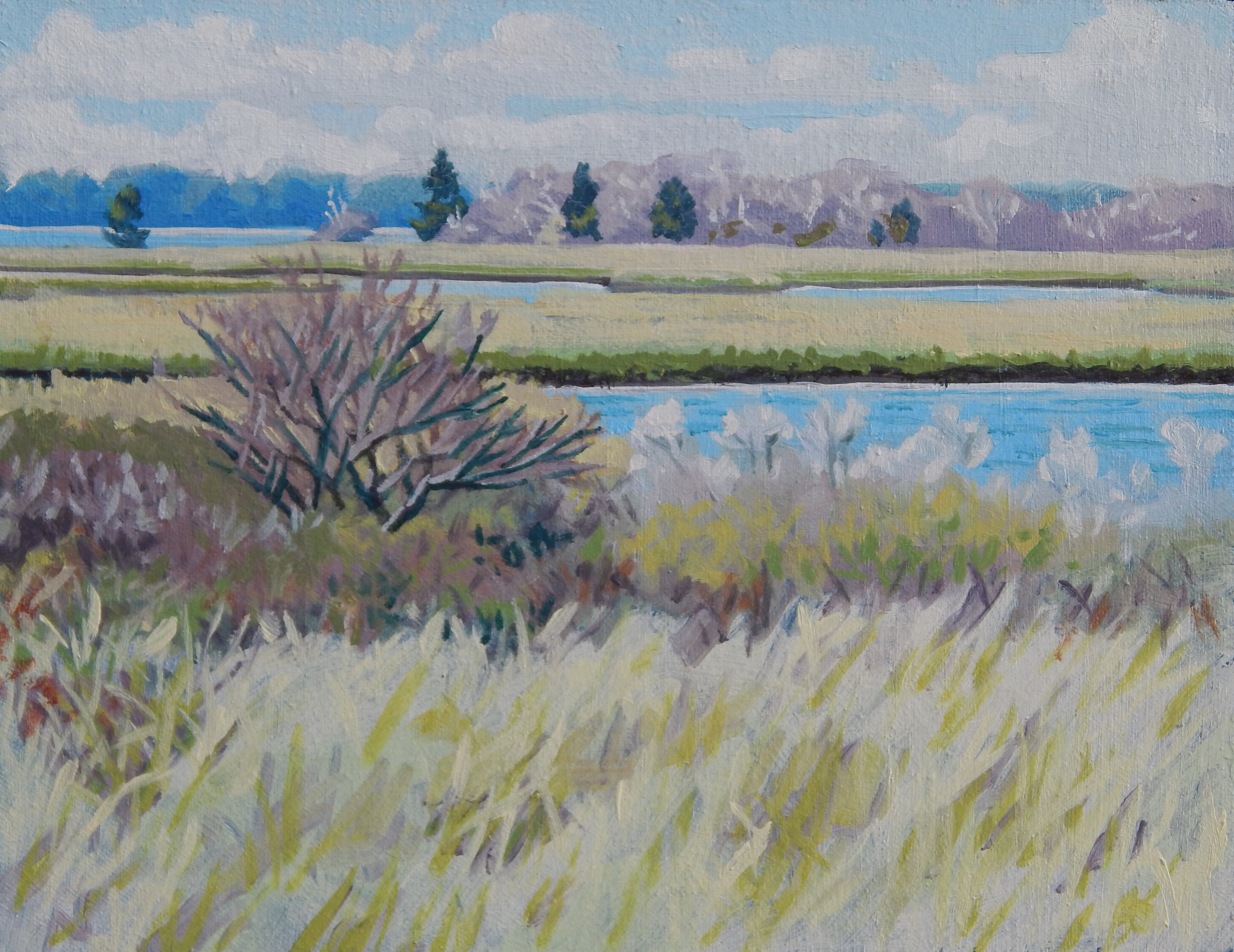 "Beach Grass and the Marsh at Waquoit II,   Severin Haines.  30""x36"", oil on canvas."