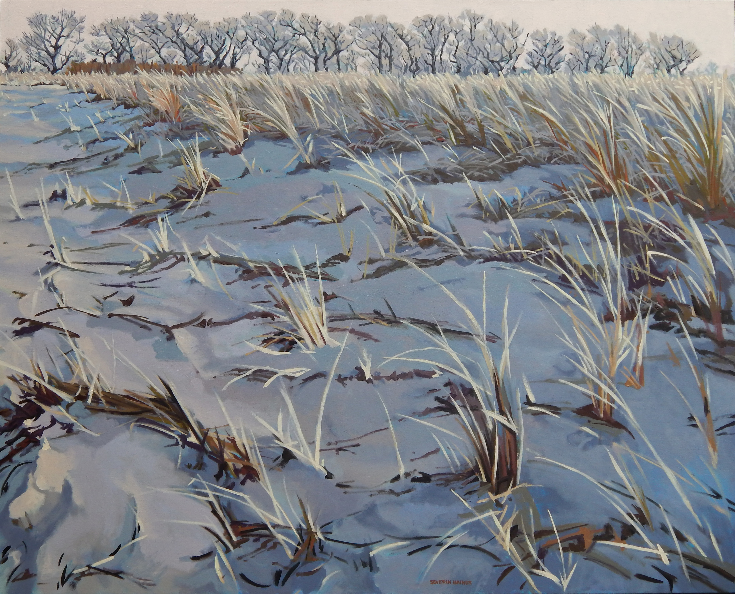 "Dune in Winter,   Severin Haines.  48""x60"" oil on canvas."