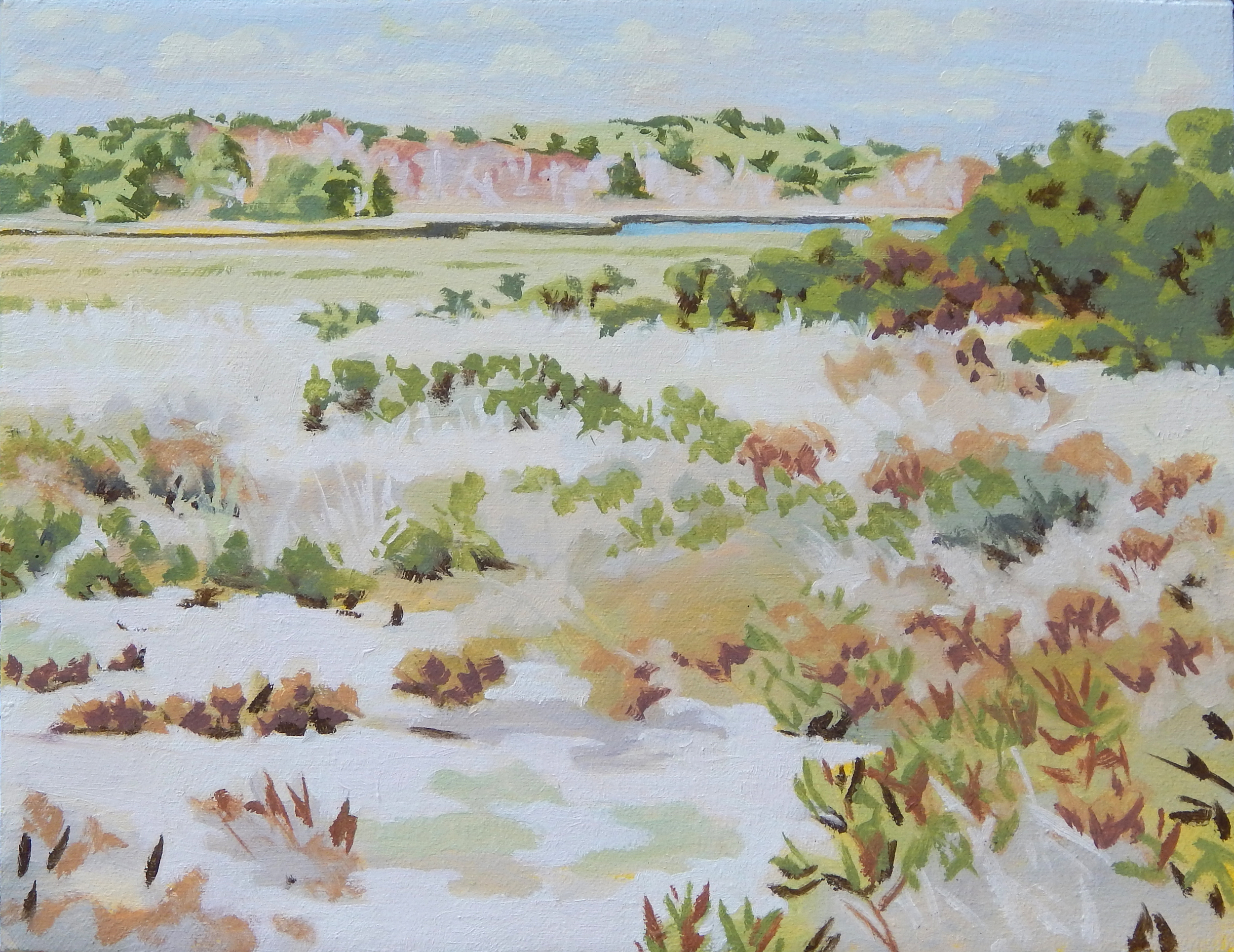 "Marsh and Brush at Waquoit,   Severin Haines.   9""x12"", oil on canvas"