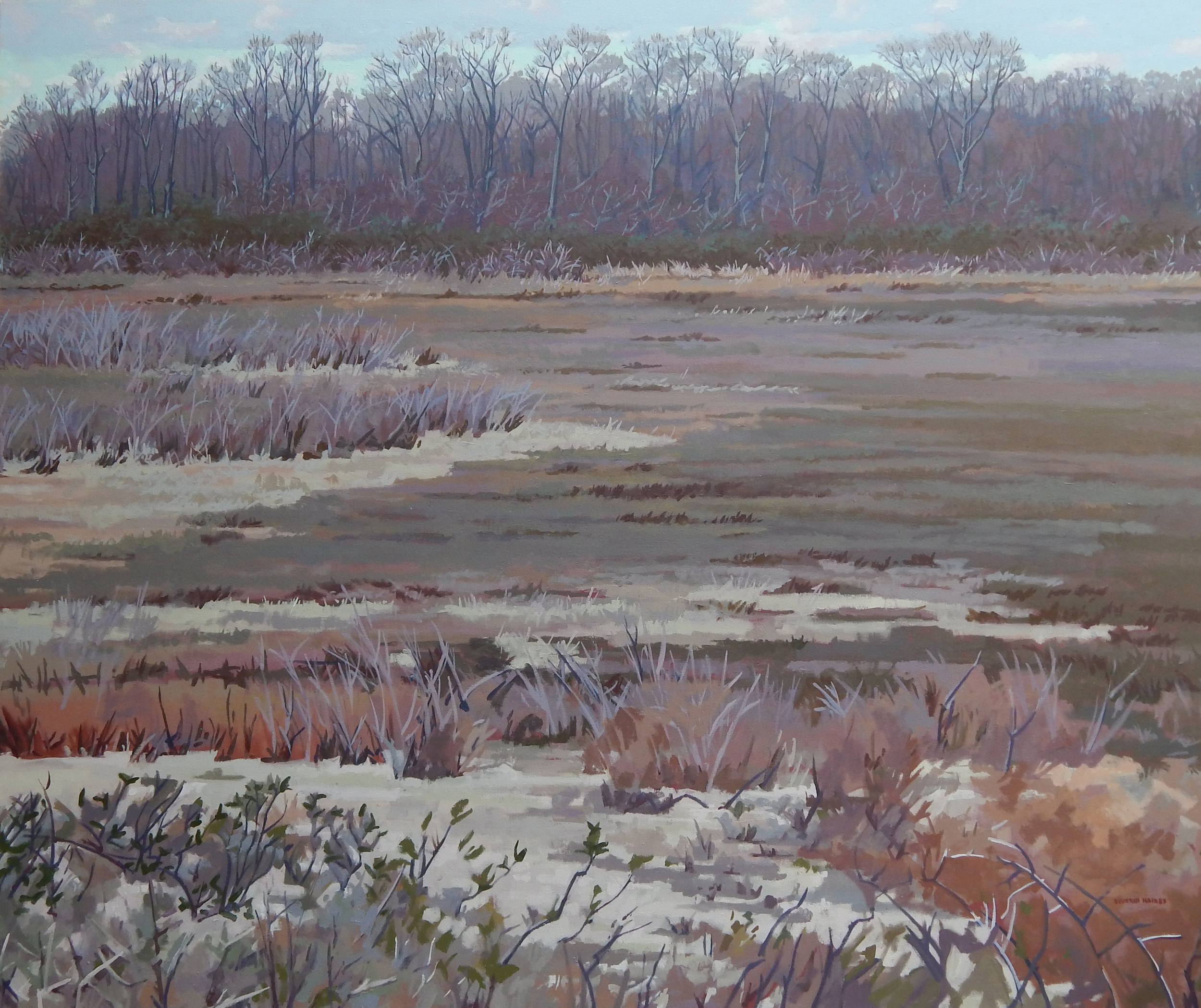 "Marsh and Trees in March,   Severin Haines.   60""x72"", oil on canvas"