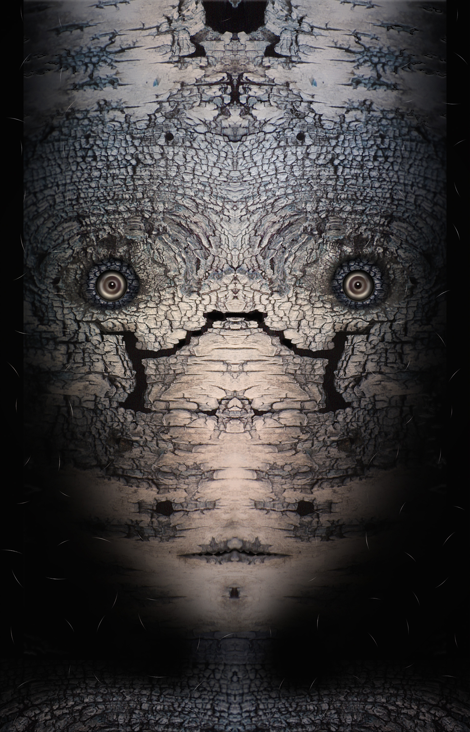 "Birch Shroud Mask,   Harvey Goldman, 2014  26"" x 36"", Digital Print, 1/20"