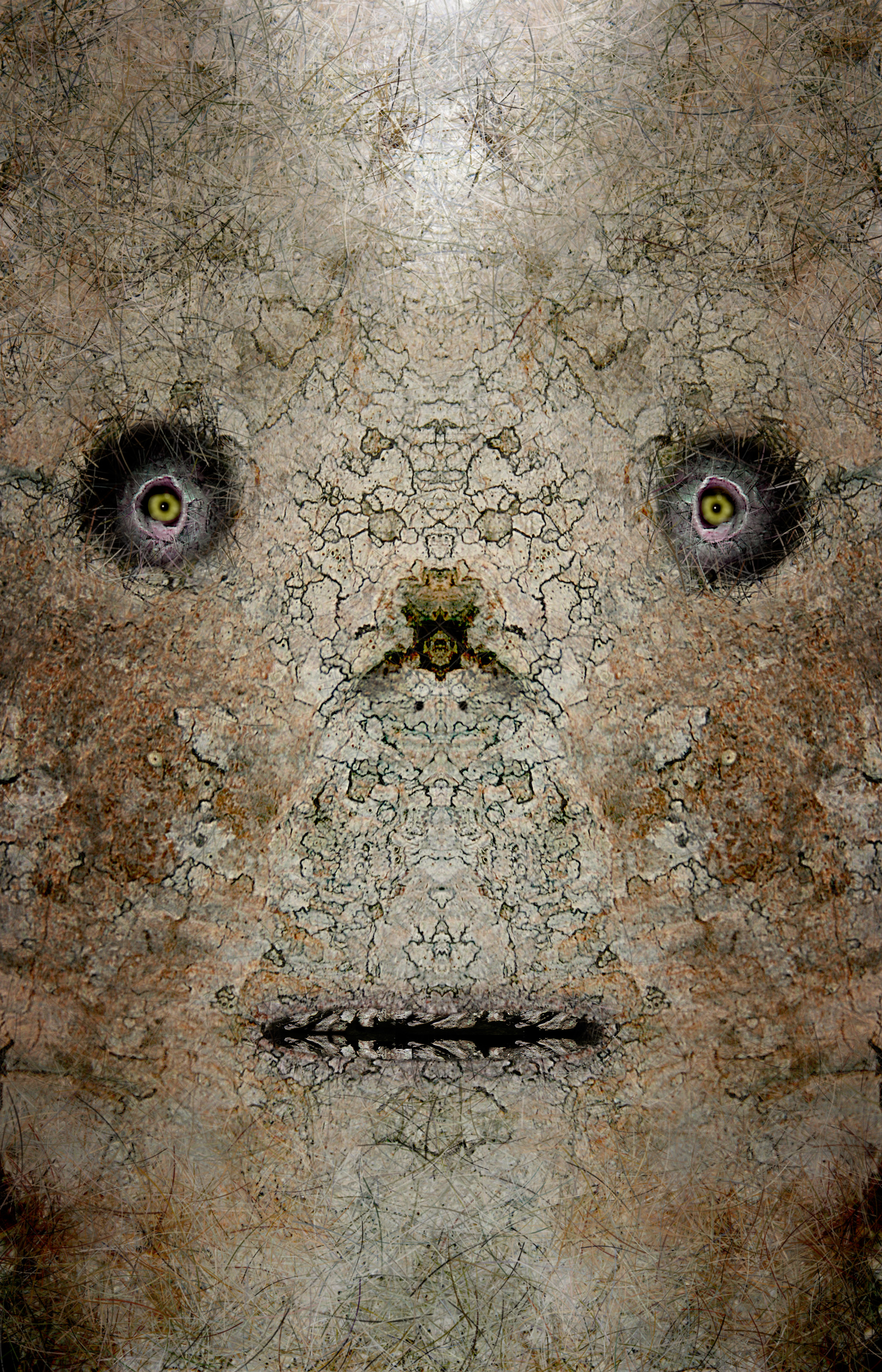 "Teotehuacan Birch Mask,   Harvey Goldman, 2014  26"" x 36"", Digital Print, 1/20"