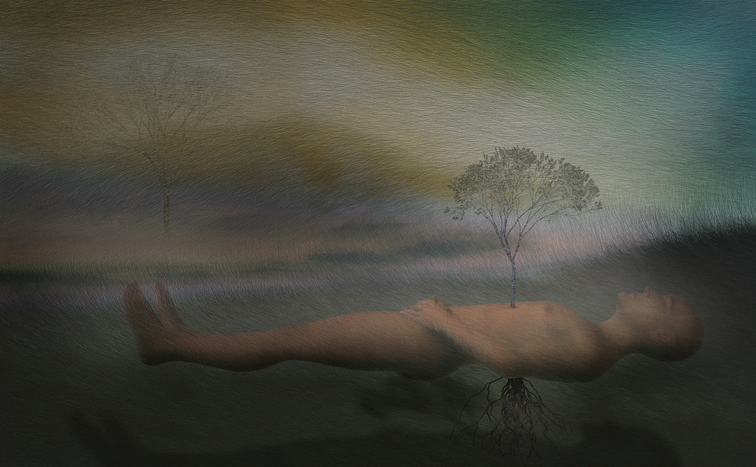 "Dreaming of NgoroGoro,     Harvey Goldman, 2012    26"" x 36,"" Digital Print, 1/20"