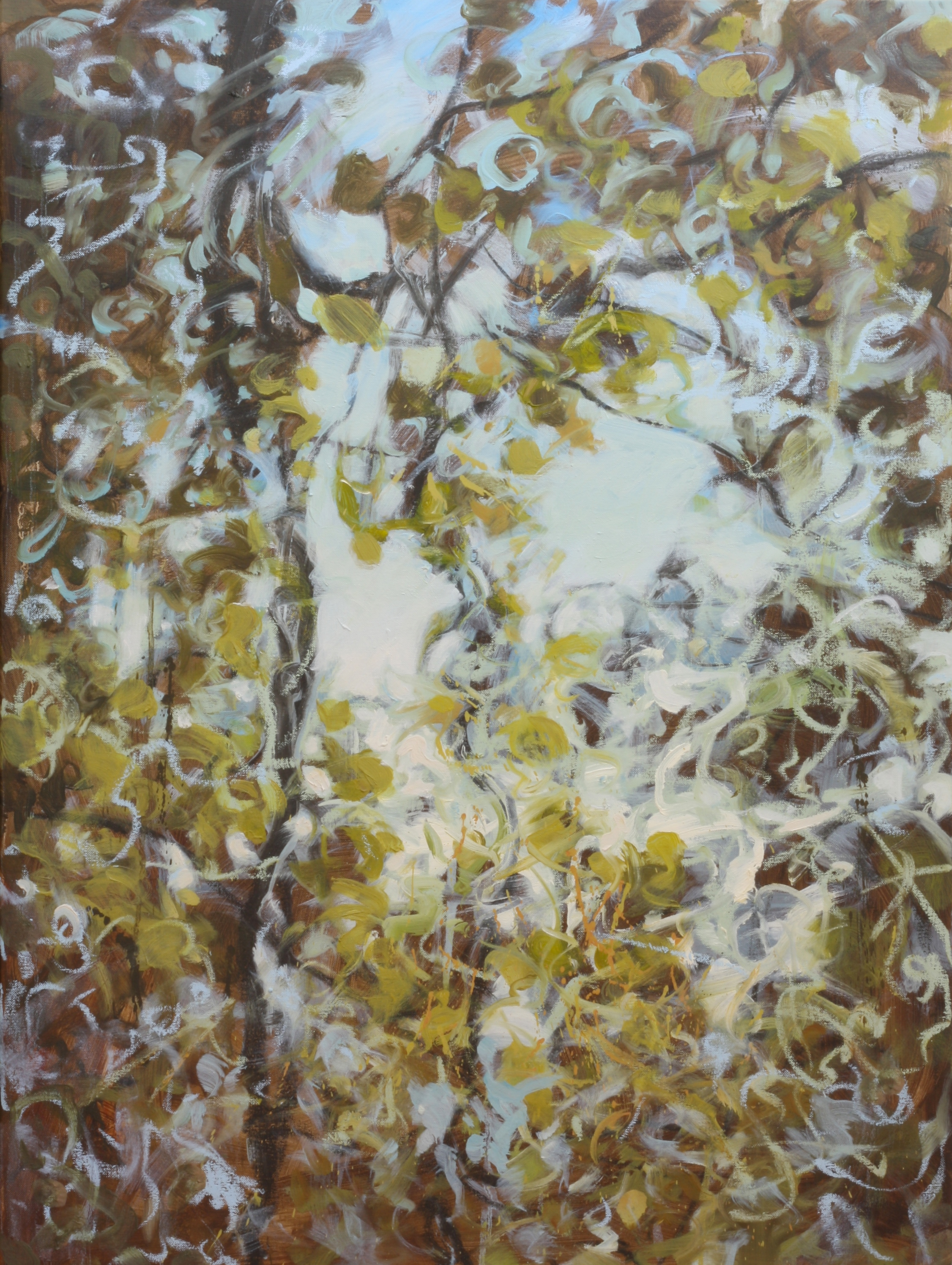 "Sky Vines II    Jamie Young , 2014    40 x 30""    Oil on canvas"