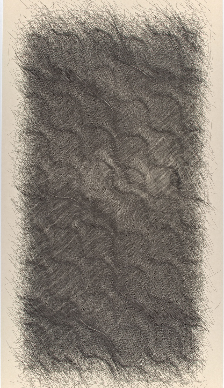 "H1   Digital drawing, inkjet pigments, 2011    Art : 33.5""x16.75""    Paper: Niyodo natural,     35""x17"""