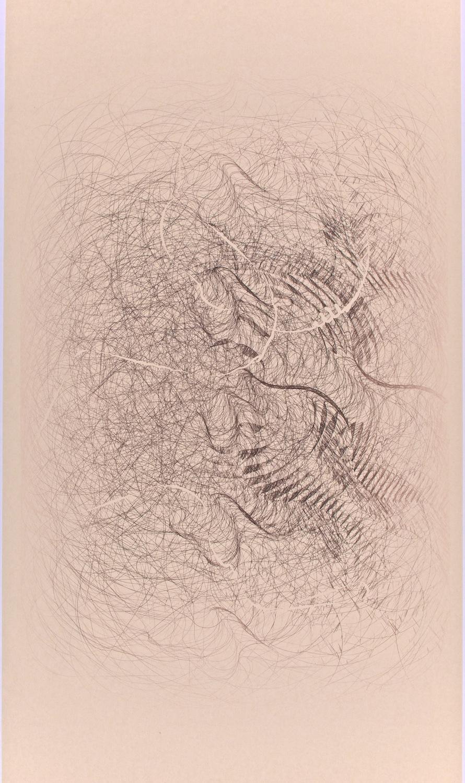 "H5   Digital drawing, inkjet pigments, 2012-2014   Art : 24""x16""    Paper: 35""x17"" Niyodo natural"