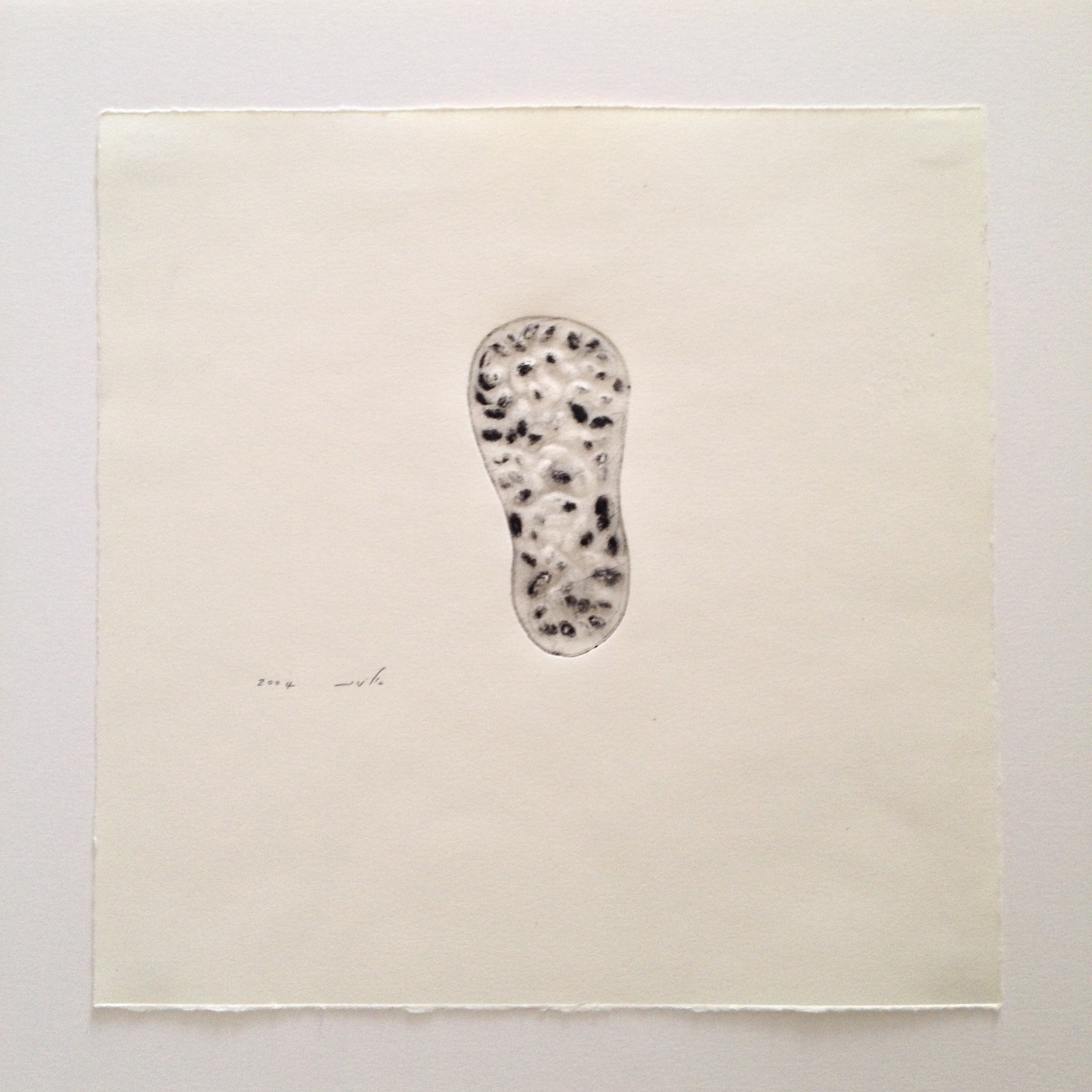 Seed container 2004 print on paper.JPG