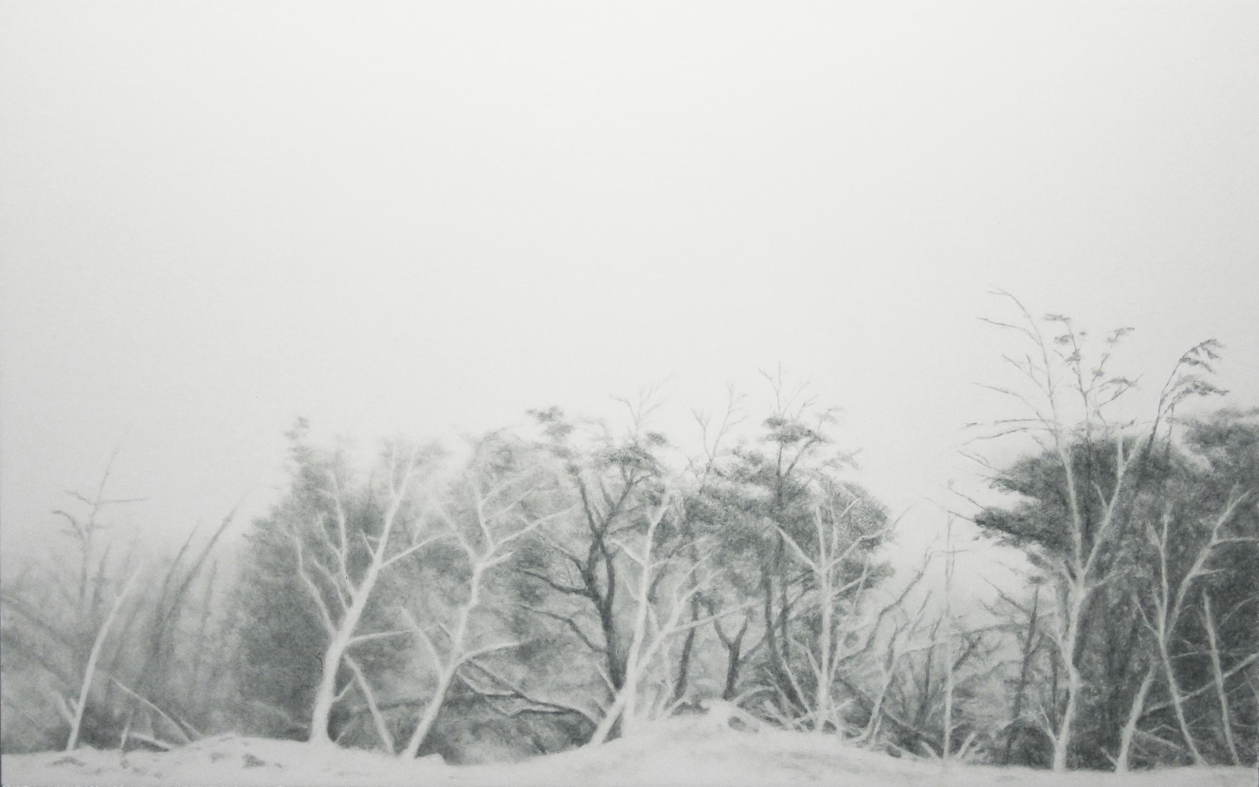 "Tormenta de Nieve | 2011 | oil on polymetal | 10"" x 16"" |"