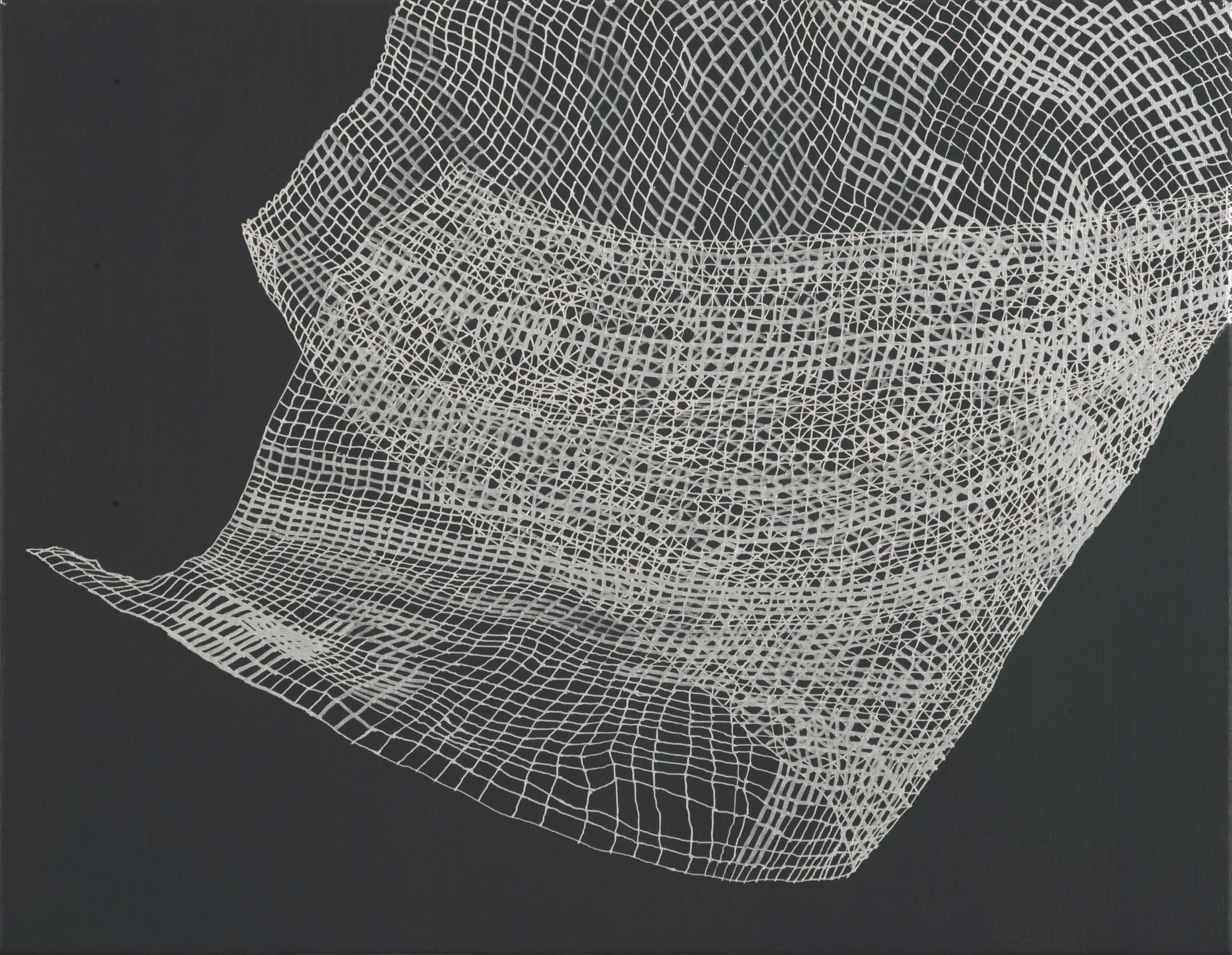 "Caroline Burton   Untitled (Deviation 1) , 2012  Silver ink and acrylic on canvas  14"" x 18"""