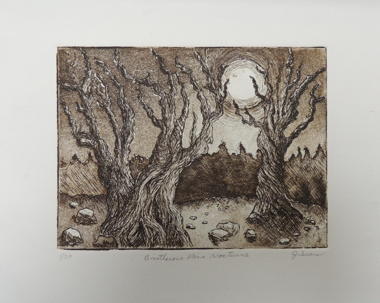 Bristlecone Pine Nocturne