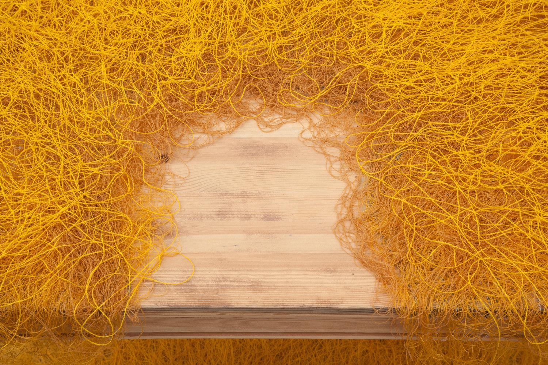 undergrowth (detail)