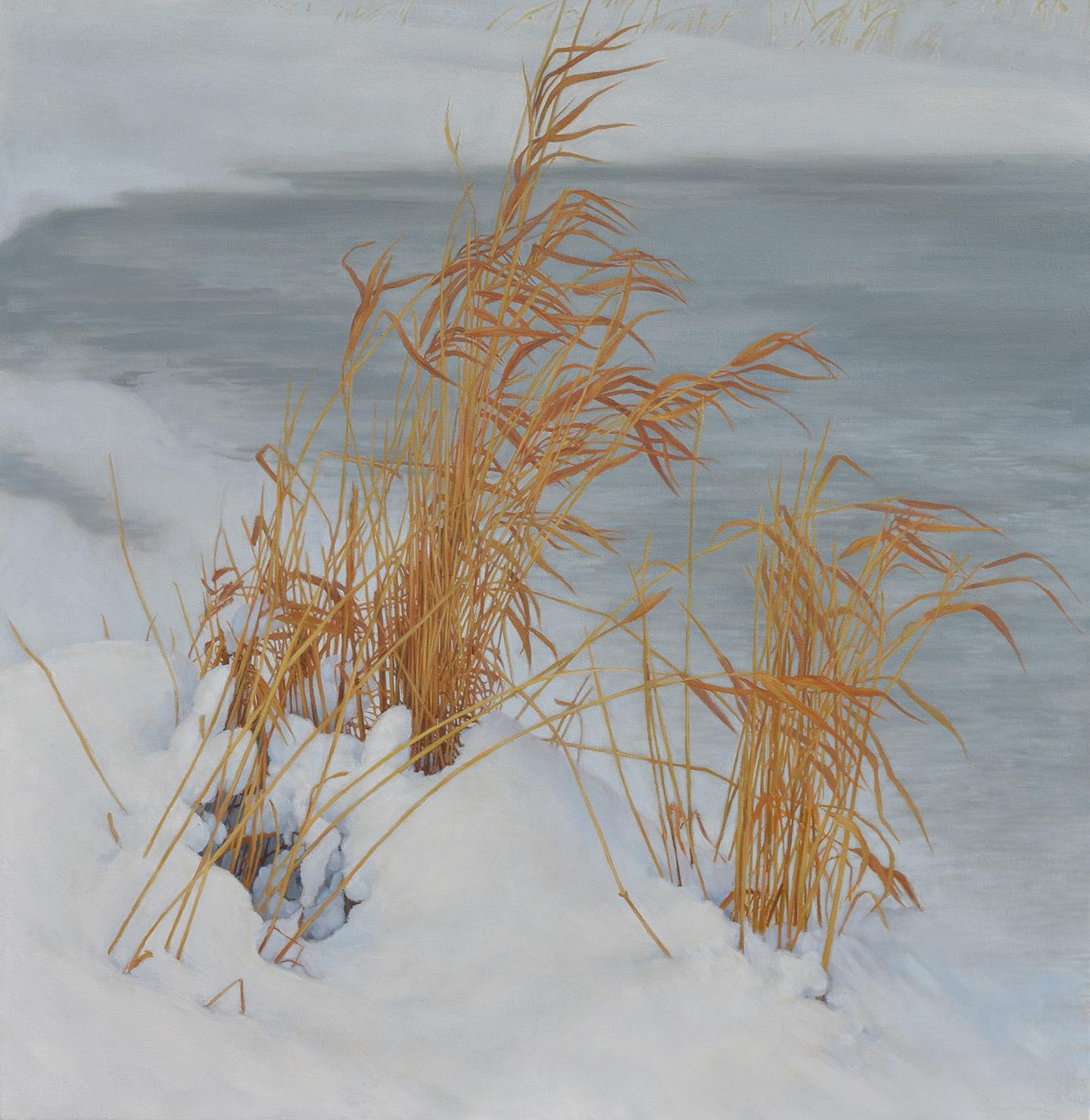Winter Courante.jpg