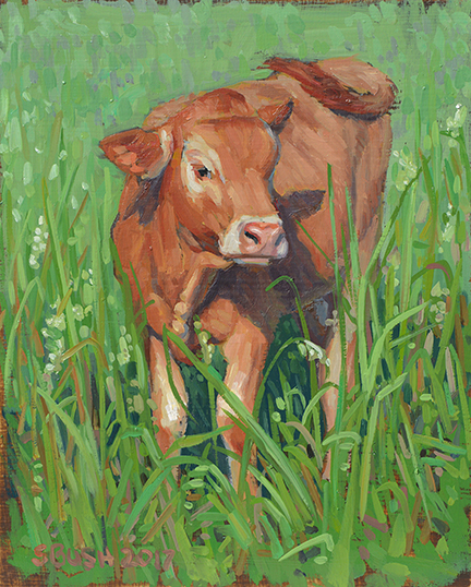 Cow Study 22
