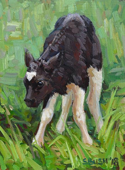 Cow Study 38