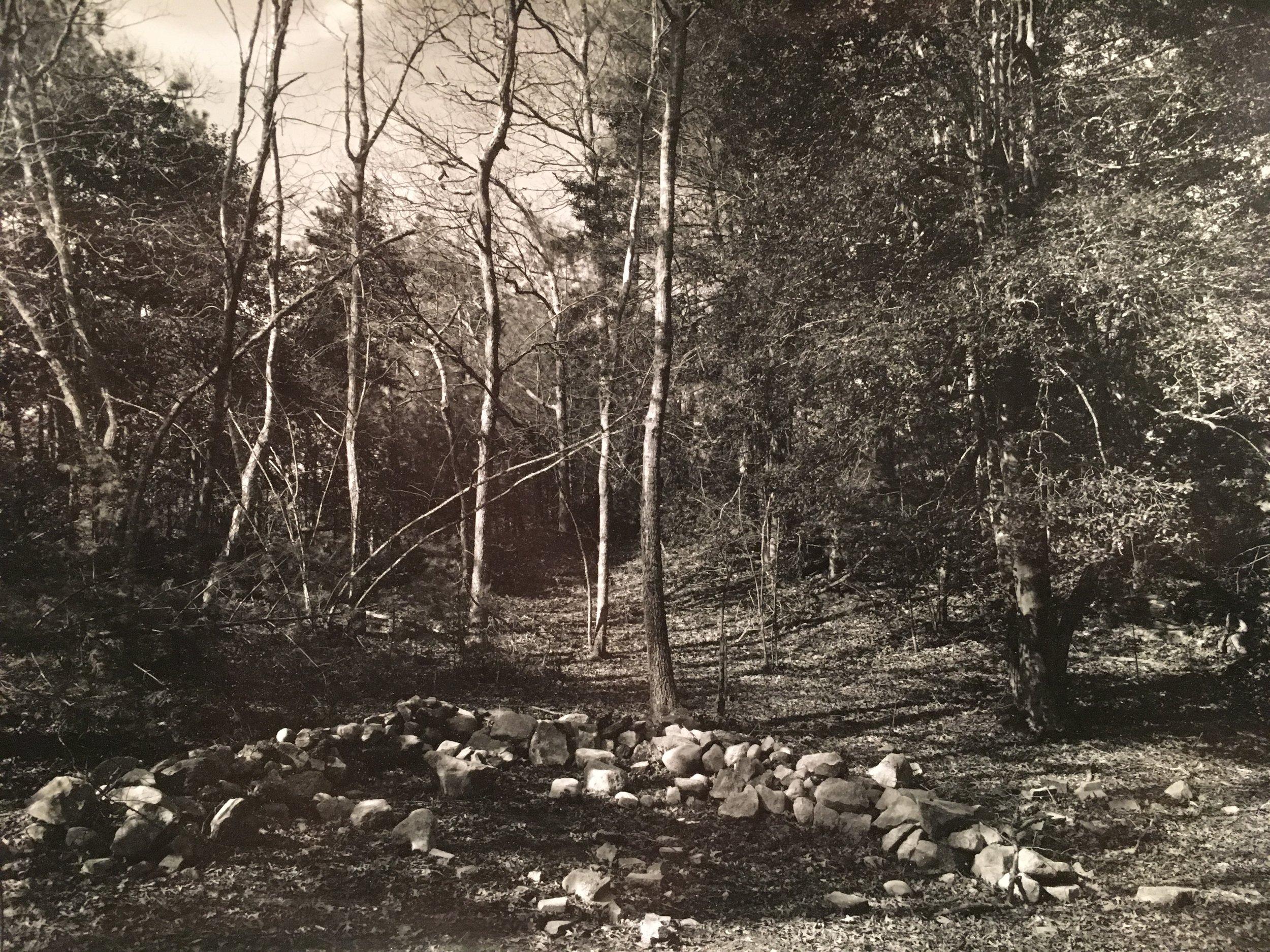 Ring of Stones in Woods_8x10_framed 14x17.jpg