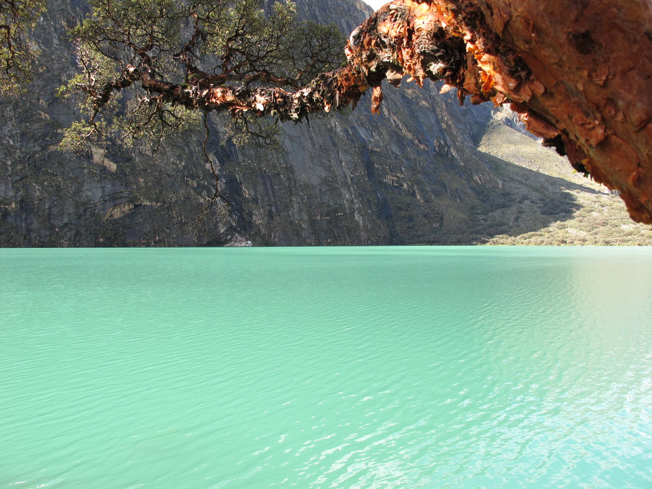 Amazing color at Laguna Llangunco