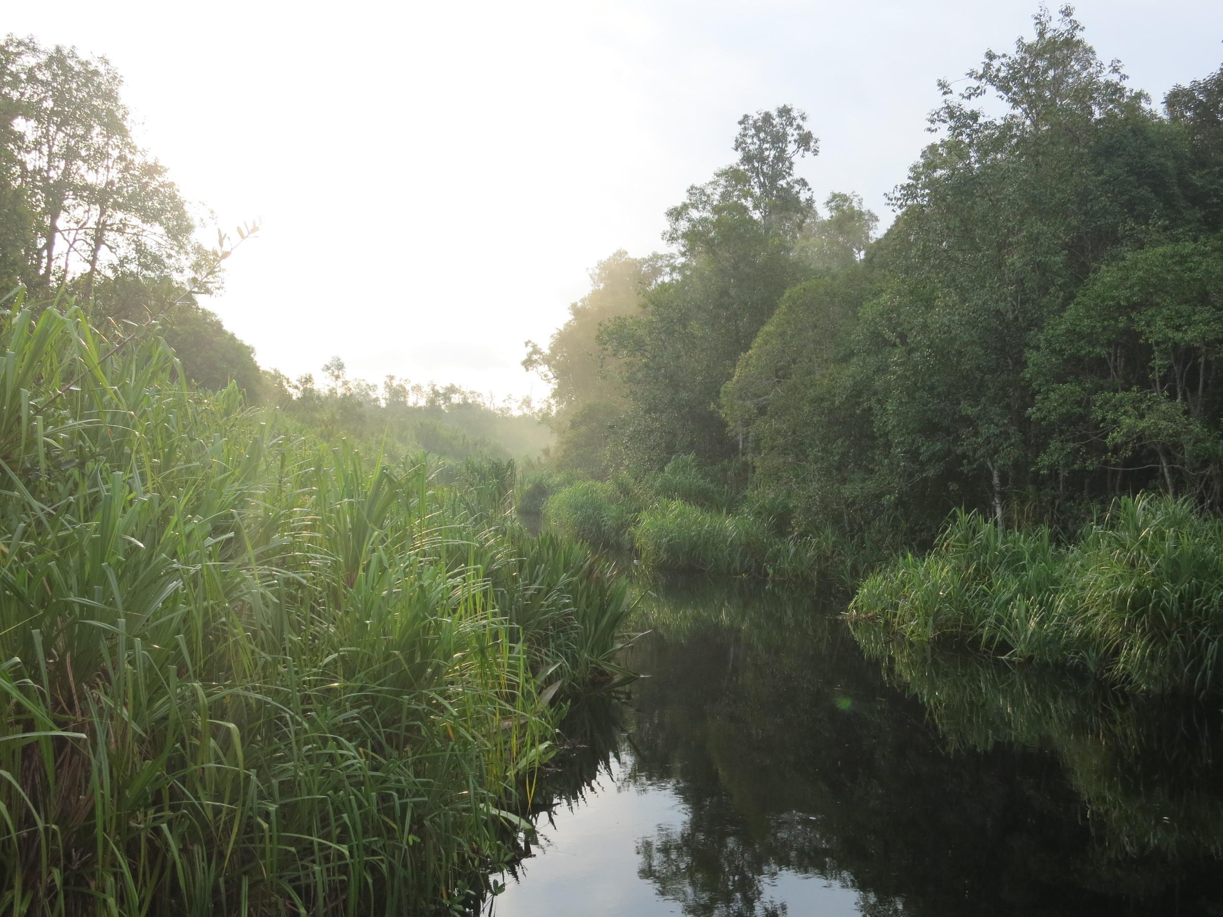 Sunrise on the black river