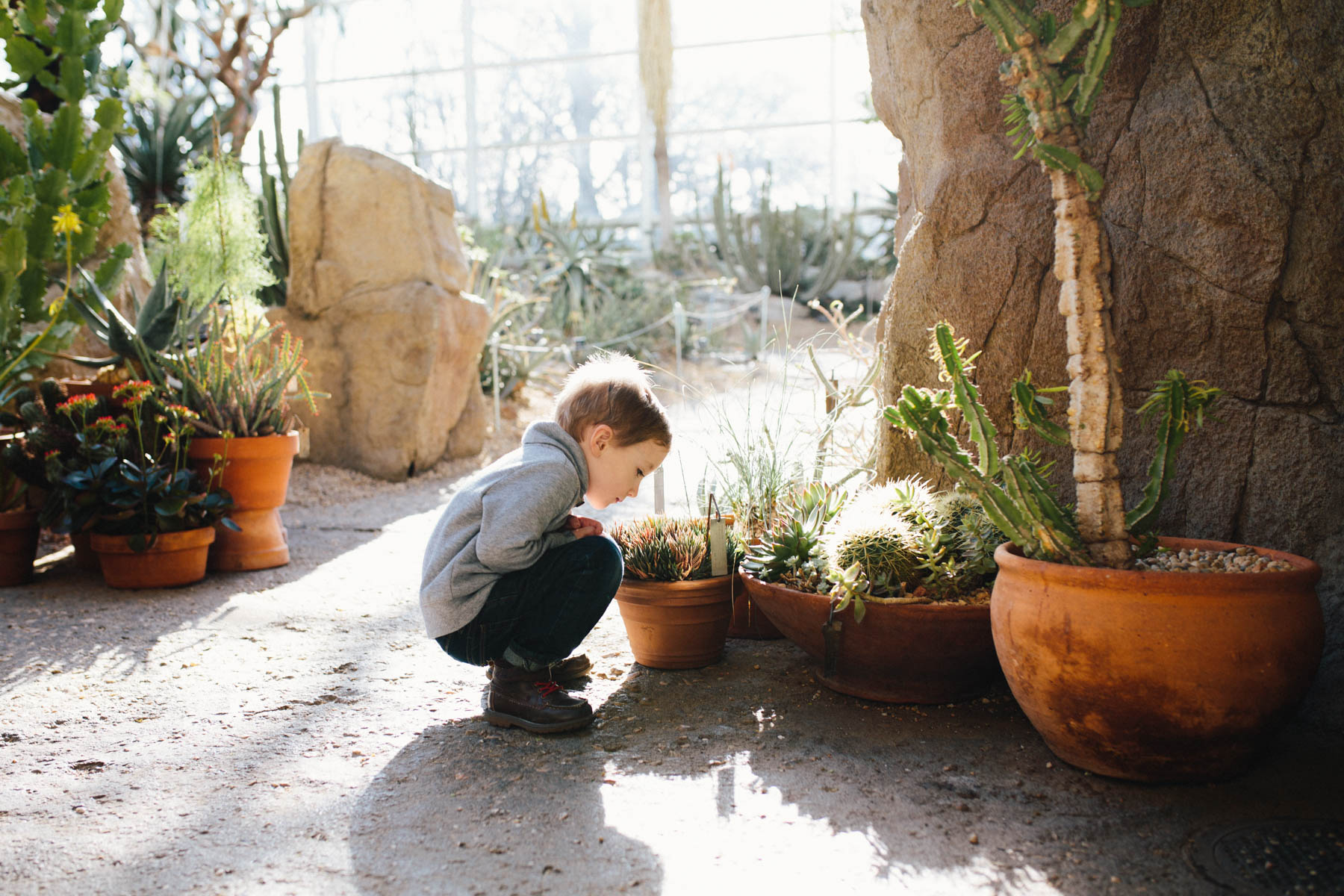Everyday Adventure: Brooklyn Botanical Garden Conservatory
