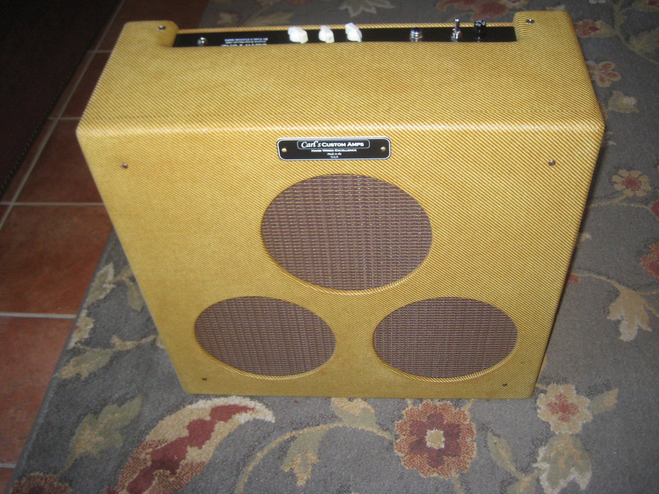 Custom built 3x10 combo amp. It's a hybrid of JCM 800 and Tiny Terror circuitry with some twists. 2XEL-34, a GZ-34, and 2 X 12AX7s. Mean British Punch!