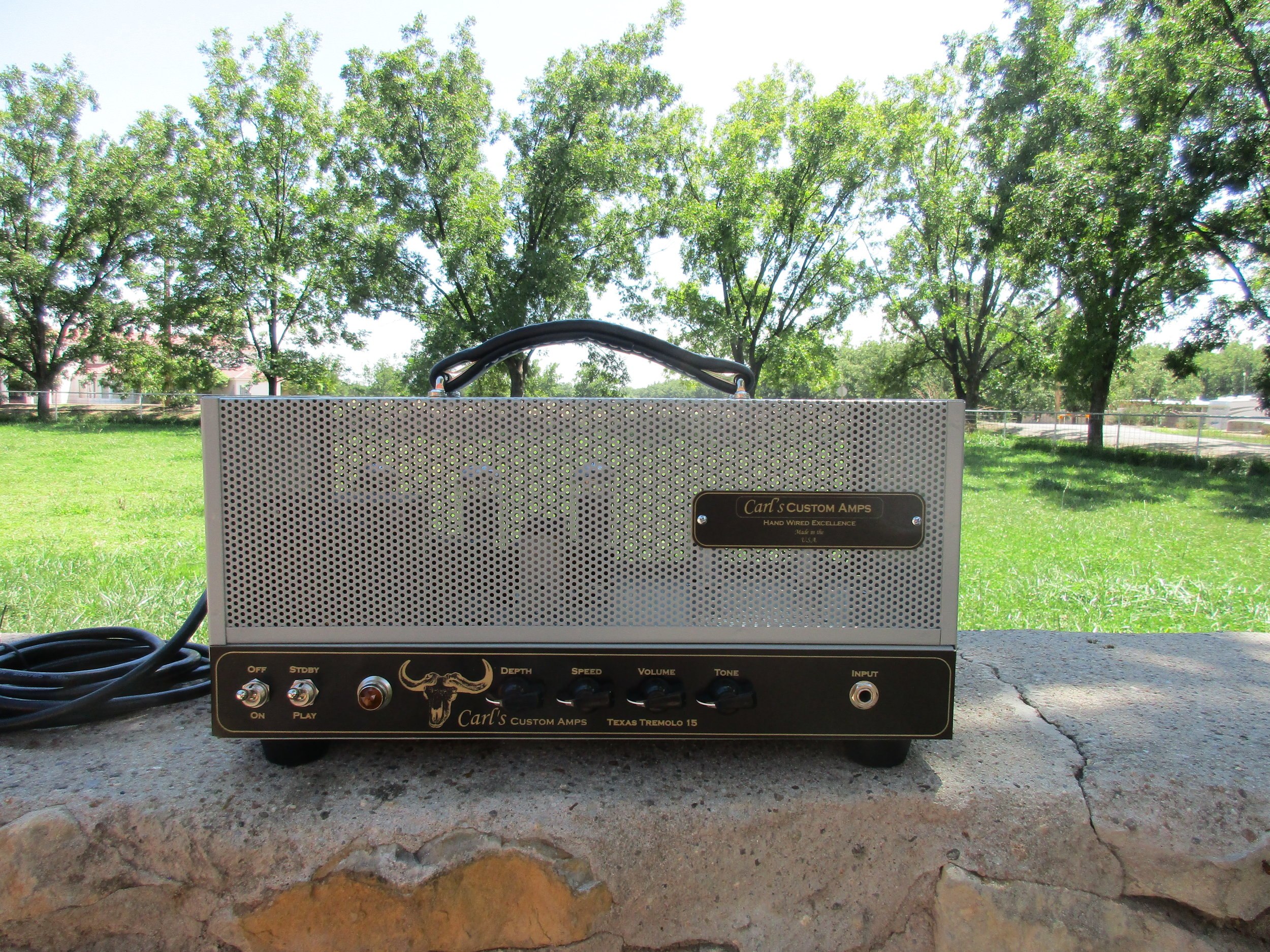 The Texas Tremolo and Brown Face Princeton style head!