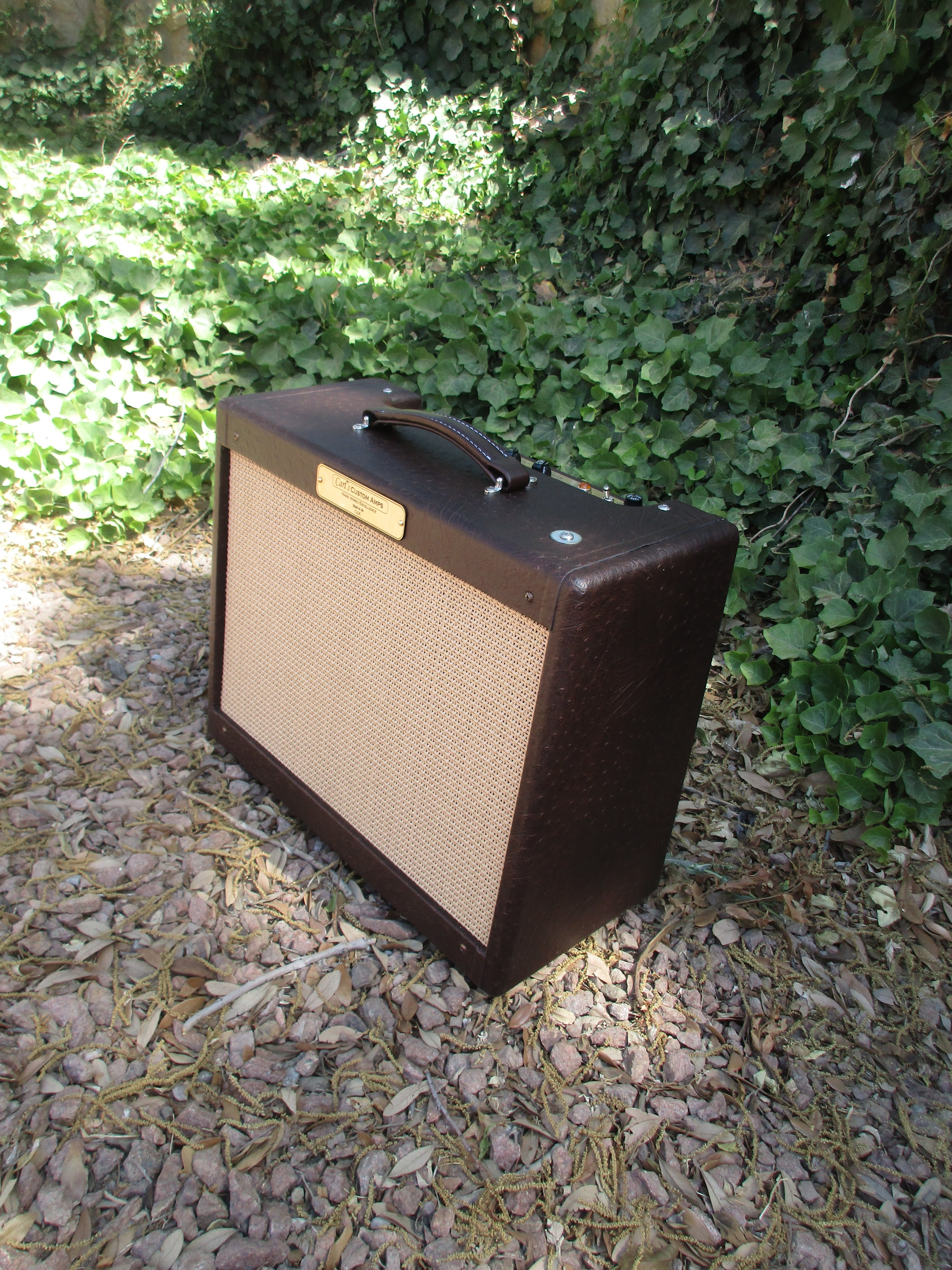This was awesome build! It's a Tweed Harvard with variable power. Steve Cropper is the most famous Harvard user and this little amp definitely has that tone.