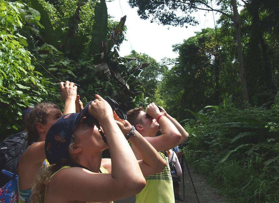 Wildlife Tour.jpg