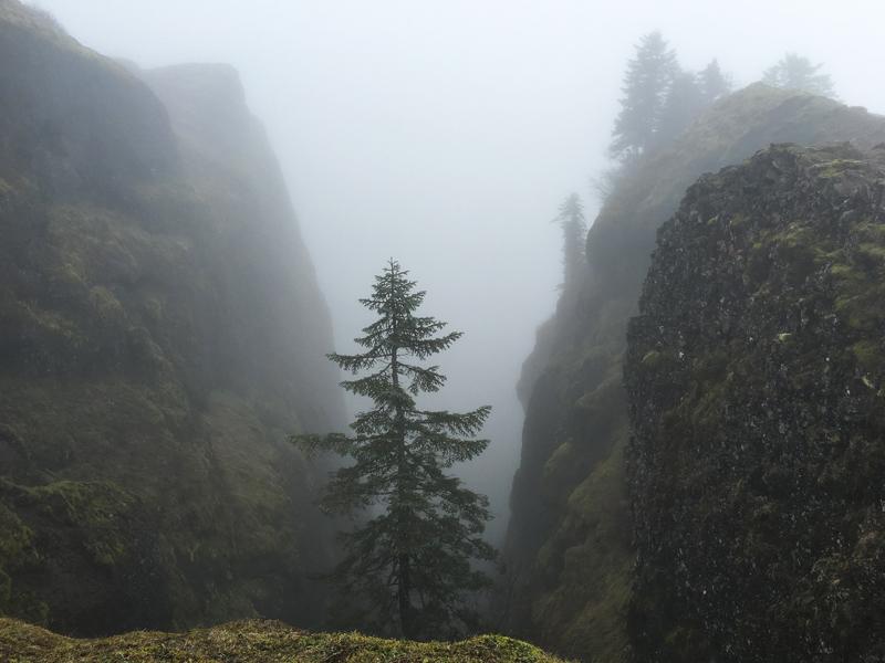 Hike36.jpg