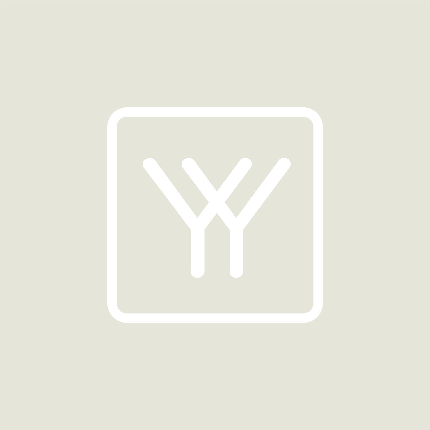 Youth_Yarrow_StyleBoard-06.jpg