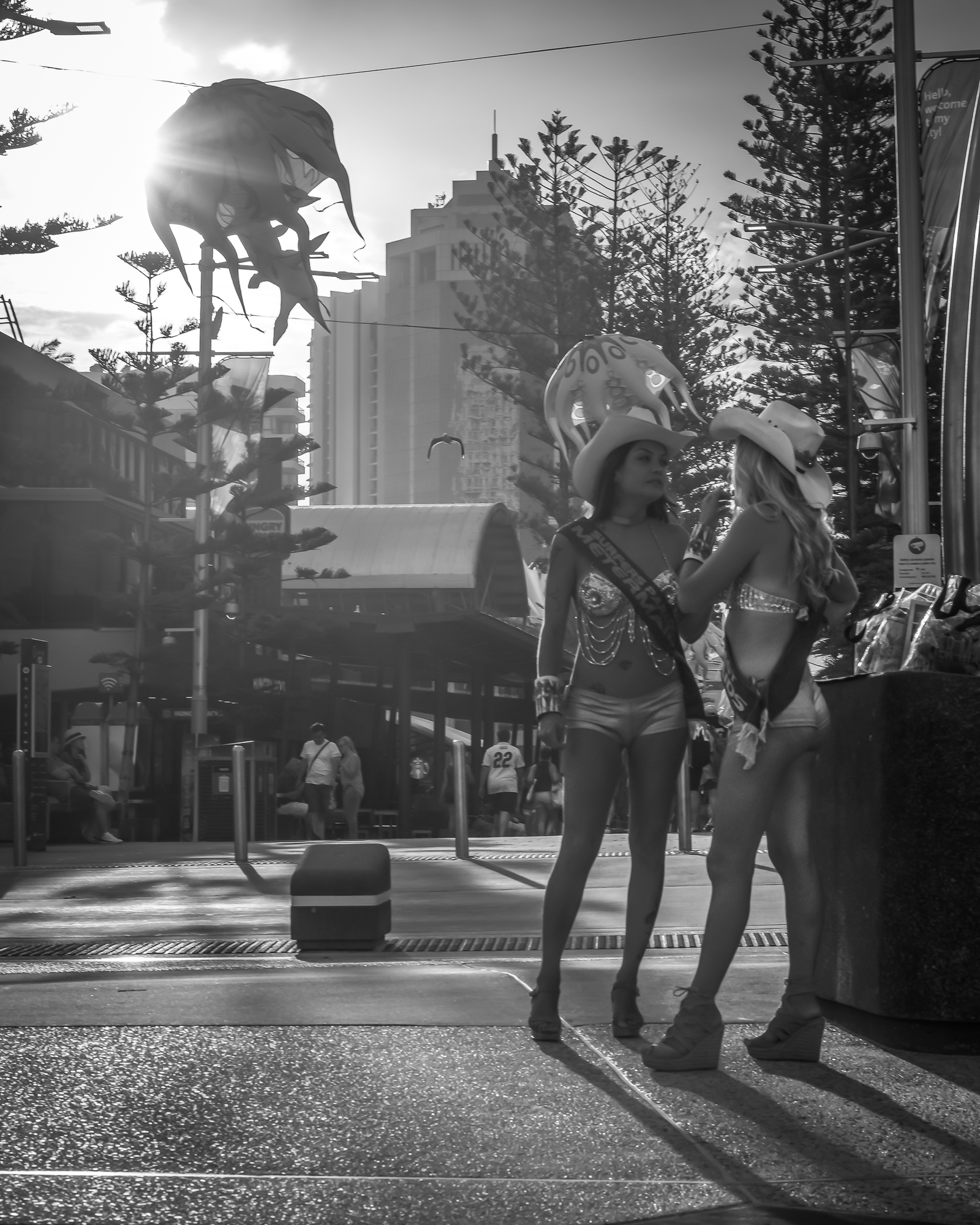 Gold Coast Meter Maids