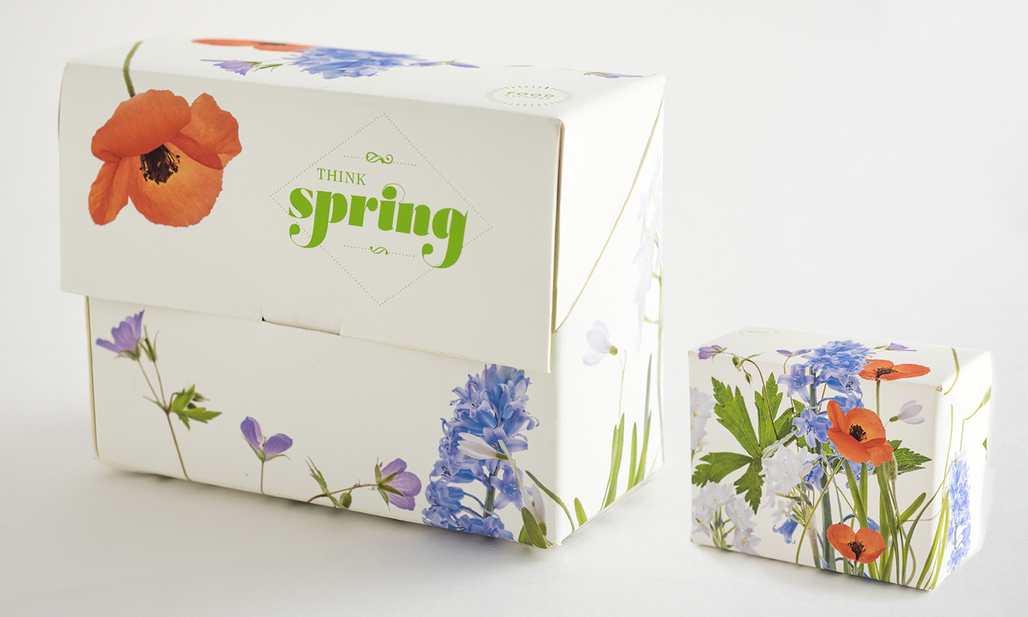 Closed front and back box of the Food Network Promo Pack (using new Logo Design). Since the Promo Pack was for the Spring Season, spring flowers were used for the outside of the box.