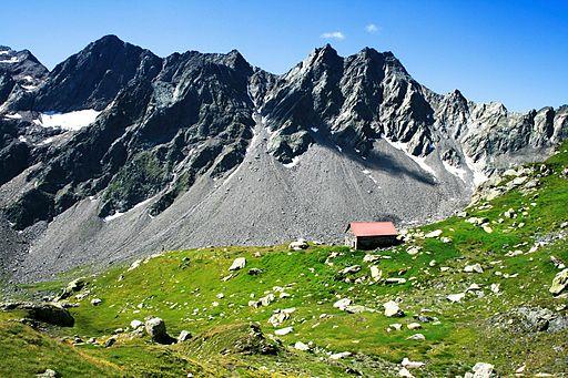 Foto von Jo in Riederalp (Eigenes Werk) [ CC-BY-SA-3.0 ] oder  GFDL ], via  Wikimedia Commons
