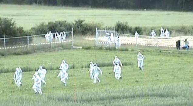 Fanatiker stürmen ein Versuchsfeld für gentechnisch veränderte Pflanzen in der Schweiz
