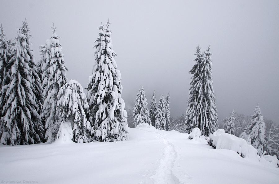 neige 099.jpg