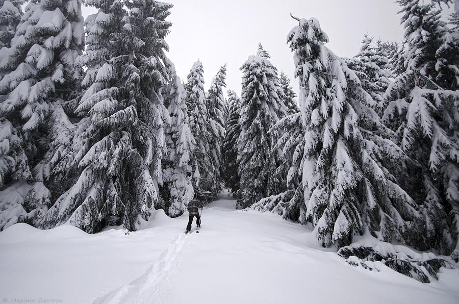 neige 100.jpg