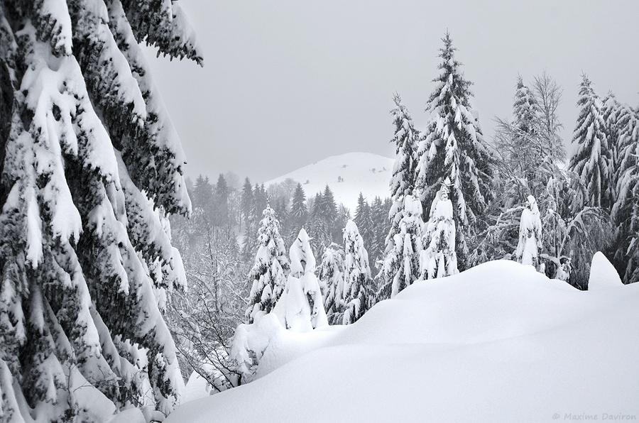neige 129.jpg