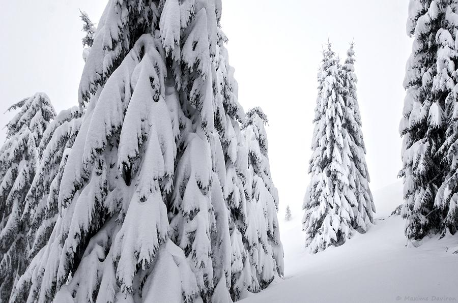 neige 141.jpg