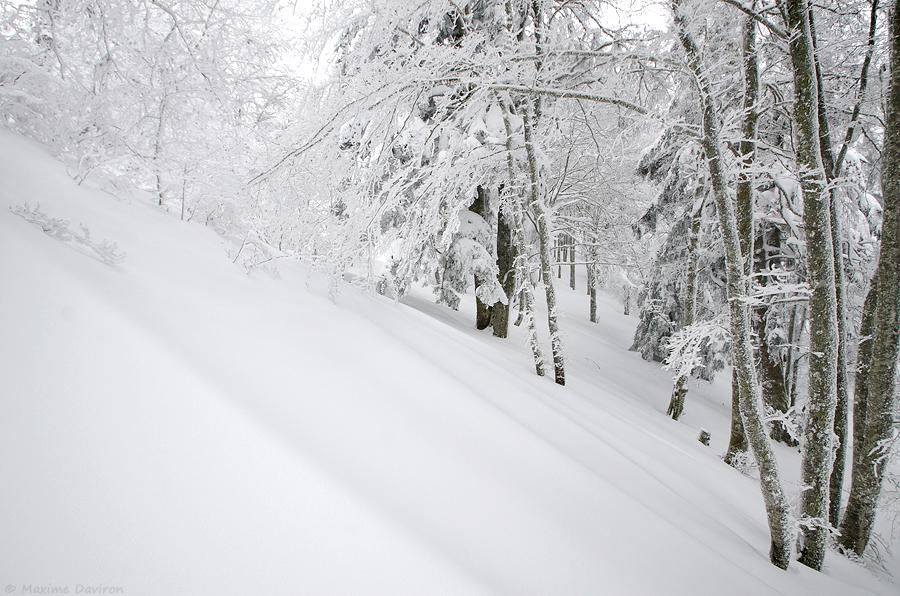 neige 195.jpg