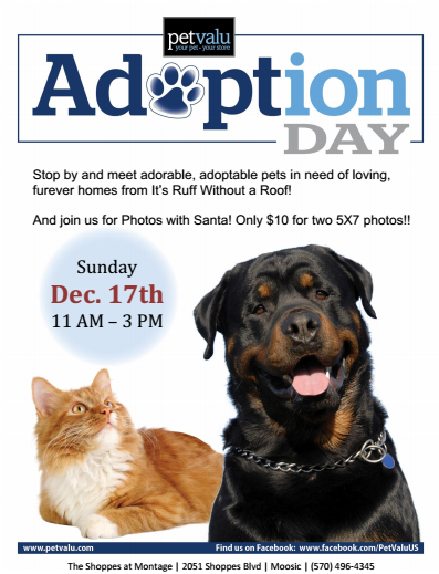 12-17 adoption event.png