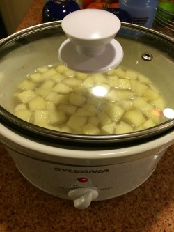 Slow-cooker apple cinnamon oatmeal  getting ready for me to enjoy in the morning!